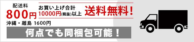 送料800円</td